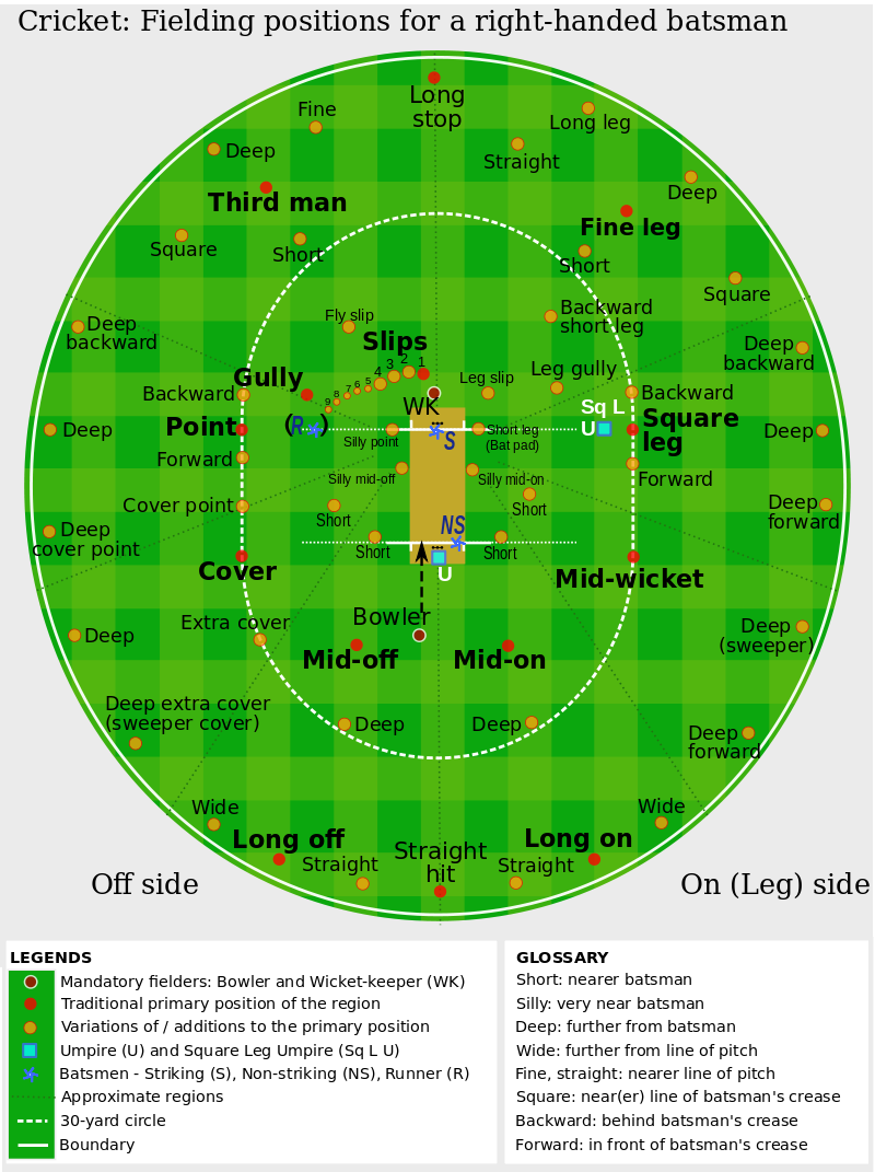 guide to cricket fielding positions